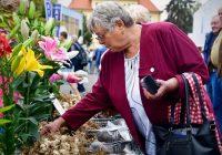 Největší výstava svého druhu v Čechách v sobotu končí
